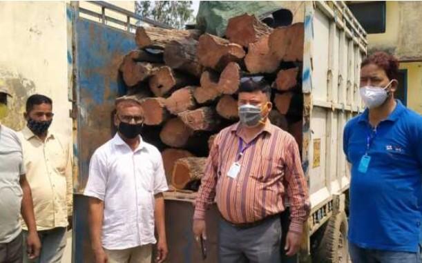 अब वन विभाग जांच में जुटा -लाखों की खैर की लकड़ी बरामद,वाहन चालक आया काबू , कोरोना में निशुल्क डाक्टर से परामर्श +91 +919824385808 and +919999672239करें
