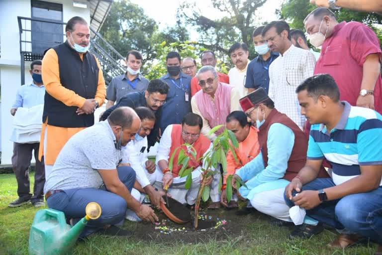 प्रधानमंत्री मोदी के जन्मदिन पर सीएम धामी ने किया वृक्षारोपण